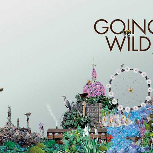 going wild [square]