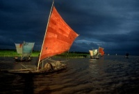 ilish fishing 2001