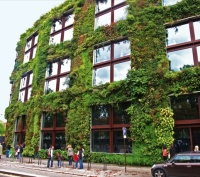 The Living Wall at the Musee du Quai Branly by Patrick Blanc with Gilles Clement and Ateliers Jean Nouvel