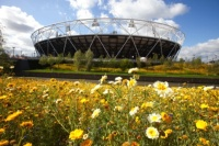 Flowers outside the Olympic Stadium