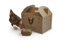 Handpecked chicken carrier, and a chicken