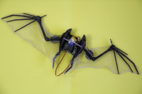 Bat-Bot - Centre for Automatic and Robotics of the Universidad Politécnica de Madrid, Spain