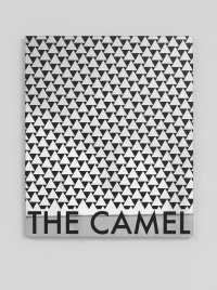The Camel James Irwin, 2013